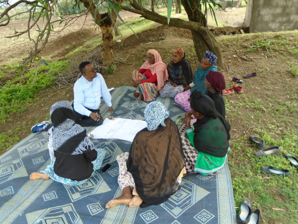 Ethiopian veterinarian working as a Research Assistant in our research group facilitating the focus group discussions.
